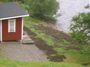Först hade jag tänkt mig en pampigare altan, men så tänkte jag om och då blev det ytterligare en rand med jord närmast huset. Den frodigare randen är resultatet av tuvtricket.