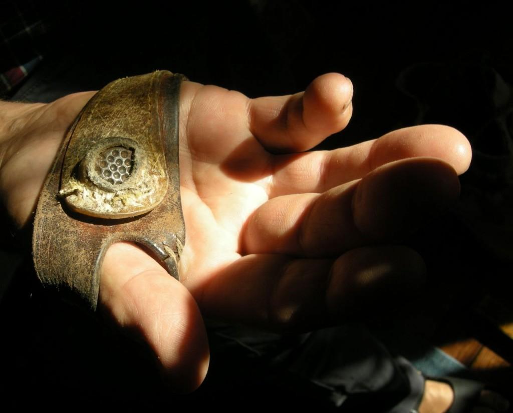 segelmakarens fingerborg
