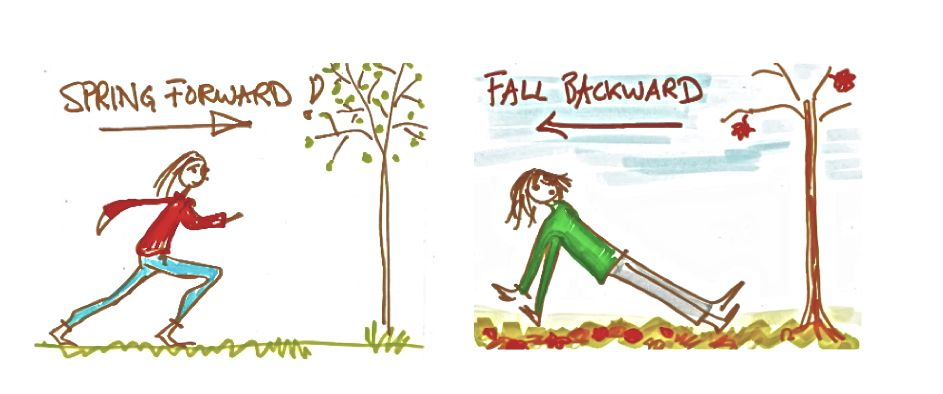 spring and fall