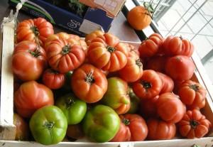 fula tomater