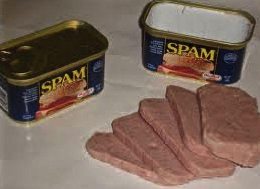 spamkött