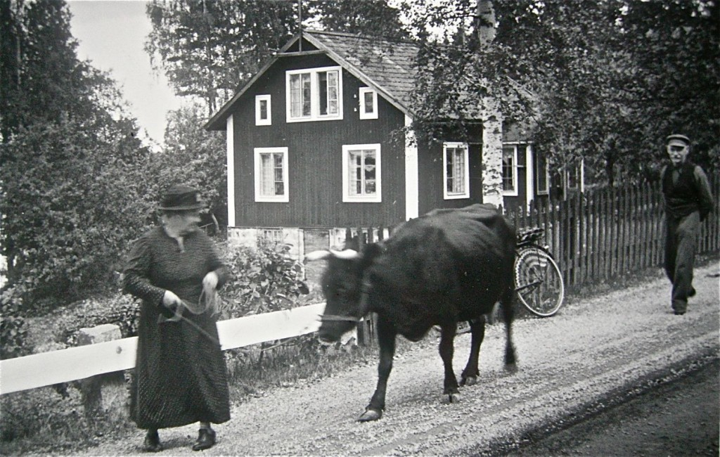 farmor och koa på väg