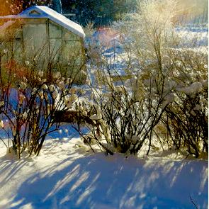 snöfärger
