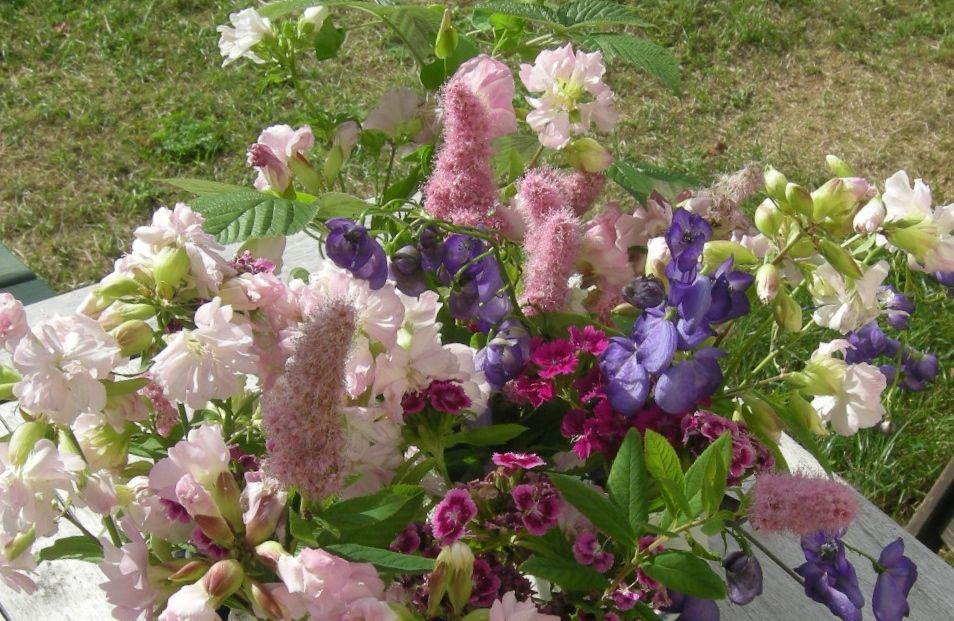 joj-blommor