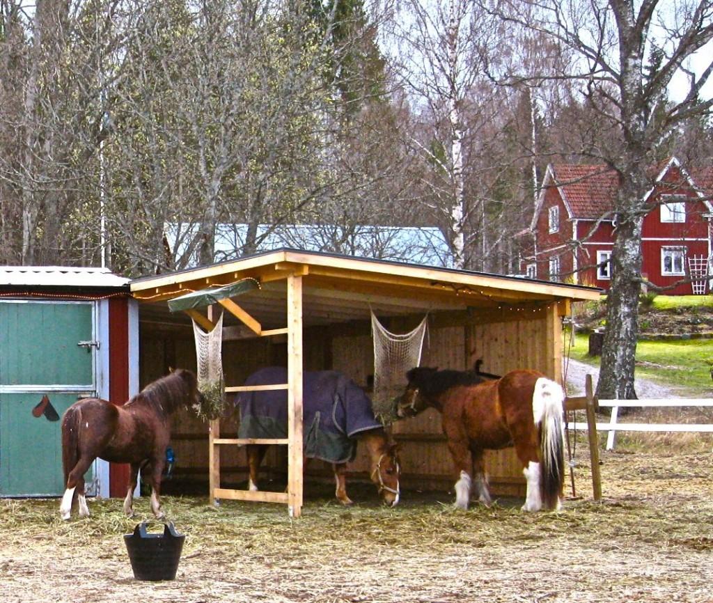 tre hästar